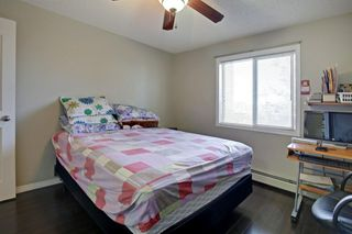 Photo 18: 1220 6224 17 Avenue SE in Calgary: Red Carpet Apartment for sale : MLS®# A1039323