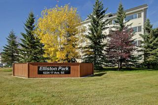 Photo 29: 1220 6224 17 Avenue SE in Calgary: Red Carpet Apartment for sale : MLS®# A1039323