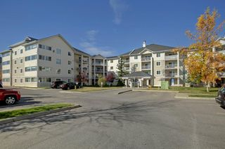 Photo 2: 1220 6224 17 Avenue SE in Calgary: Red Carpet Apartment for sale : MLS®# A1039323