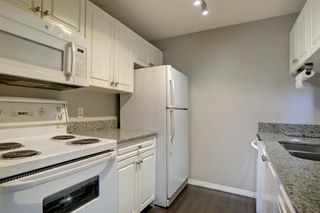 Photo 12: 1220 6224 17 Avenue SE in Calgary: Red Carpet Apartment for sale : MLS®# A1039323