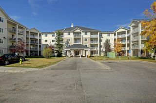 Photo 28: 1220 6224 17 Avenue SE in Calgary: Red Carpet Apartment for sale : MLS®# A1039323