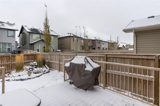 Photo 29: 2204 Brightoncrest Common SE in Calgary: New Brighton Detached for sale : MLS®# A1043586