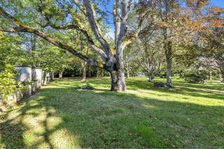 Photo 52: 3393 Upper Terrace Rd in : OB Uplands House for sale (Oak Bay)  : MLS®# 857501