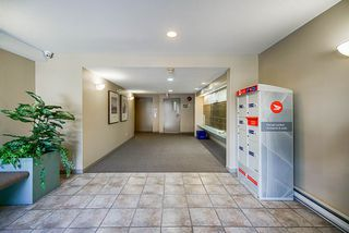 """Photo 4: 304 19131 FORD Road in Pitt Meadows: Central Meadows Condo for sale in """"WOODFORD MANOR"""" : MLS®# R2514716"""