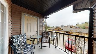 Photo 25: 38 671 SILVER BERRY Road in Edmonton: Zone 30 Carriage for sale : MLS®# E4196083