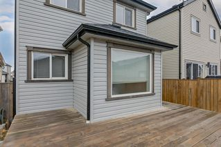 Photo 32: 52 COPPERSTONE Terrace SE in Calgary: Copperfield Detached for sale : MLS®# C4293126