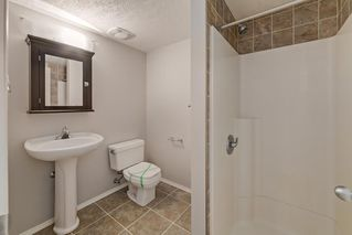 Photo 30: 52 COPPERSTONE Terrace SE in Calgary: Copperfield Detached for sale : MLS®# C4293126