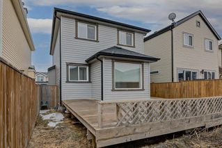 Photo 34: 52 COPPERSTONE Terrace SE in Calgary: Copperfield Detached for sale : MLS®# C4293126