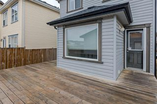 Photo 31: 52 COPPERSTONE Terrace SE in Calgary: Copperfield Detached for sale : MLS®# C4293126