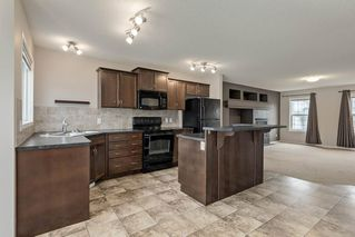 Photo 10: 52 COPPERSTONE Terrace SE in Calgary: Copperfield Detached for sale : MLS®# C4293126