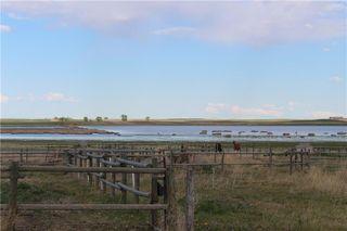 Photo 40: 184003 Range Road 264: Rural Vulcan County Detached for sale : MLS®# C4299458