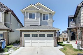 Main Photo: 55 SKYVIEW SHORES Court NE in Calgary: Skyview Ranch Detached for sale : MLS®# A1020652