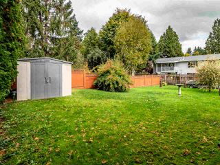 Photo 36: 34689 MARSHALL ROAD in Abbotsford: Abbotsford East House for sale : MLS®# R2511278
