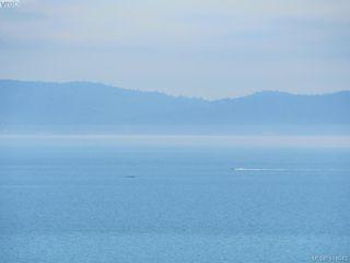 Photo 25: 5070 Catalina Terrace in VICTORIA: SE Cordova Bay Single Family Detached for sale (Saanich East)  : MLS®# 414943