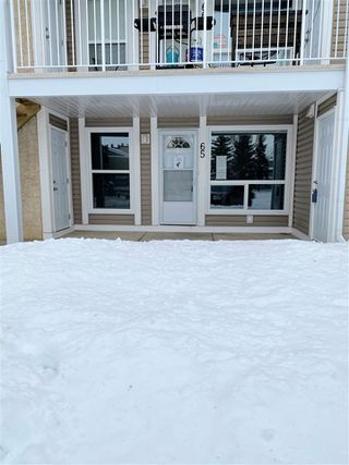 Main Photo: 65 2204 118 Street in Edmonton: Zone 16 Carriage for sale : MLS®# E4185434