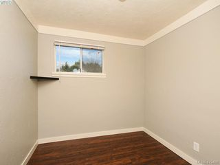 Photo 14: 4099 Glanford Avenue in VICTORIA: SW Glanford Single Family Detached for sale (Saanich West)  : MLS®# 423498
