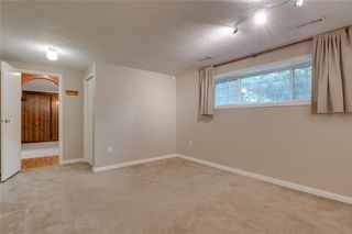 Photo 22: 6807 24 Avenue NE in Calgary: Pineridge Detached for sale : MLS®# C4258740