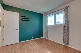 Photo 16: 6807 24 Avenue NE in Calgary: Pineridge Detached for sale : MLS®# C4258740