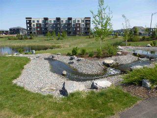 Photo 3: 415 1004 ROSENTHAL Boulevard in Edmonton: Zone 58 Condo for sale : MLS®# E4168101
