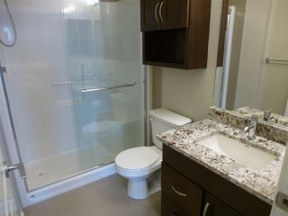 Photo 16: 415 1004 ROSENTHAL Boulevard in Edmonton: Zone 58 Condo for sale : MLS®# E4168101