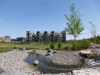 Photo 4: 415 1004 ROSENTHAL Boulevard in Edmonton: Zone 58 Condo for sale : MLS®# E4168101