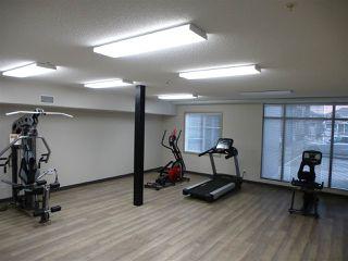 Photo 26: 415 1004 ROSENTHAL Boulevard in Edmonton: Zone 58 Condo for sale : MLS®# E4168101