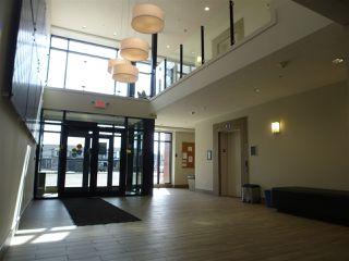 Photo 25: 415 1004 ROSENTHAL Boulevard in Edmonton: Zone 58 Condo for sale : MLS®# E4168101