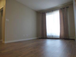 Photo 11: 415 1004 ROSENTHAL Boulevard in Edmonton: Zone 58 Condo for sale : MLS®# E4168101