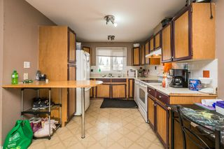 Photo 7: 4611 37B Avenue in Edmonton: Zone 29 House for sale : MLS®# E4183259