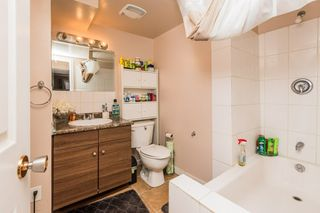 Photo 25: 4611 37B Avenue in Edmonton: Zone 29 House for sale : MLS®# E4183259
