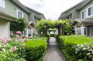"Photo 23: 6 1233 W 16TH Street in North Vancouver: Norgate Townhouse for sale in ""Rosedale Court"" : MLS®# R2469415"