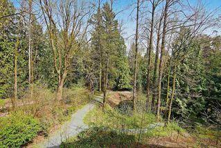 "Photo 20: 204 33328 E BOURQUIN Crescent in Abbotsford: Central Abbotsford Condo for sale in ""Natures Gate"" : MLS®# R2474512"