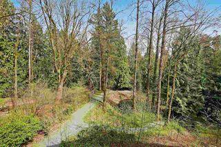 "Photo 30: 204 33328 E BOURQUIN Crescent in Abbotsford: Central Abbotsford Condo for sale in ""Natures Gate"" : MLS®# R2474512"