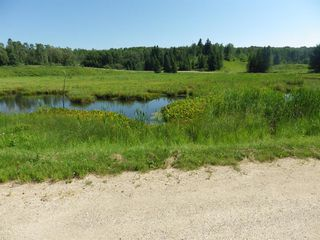Photo 14: 10 13049 N Township Road 432 in Rural Ponoka County: NONE Residential for sale : MLS®# A1014329