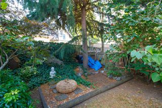 Photo 18: 1317 Balmoral Rd in : Vi Fernwood House for sale (Victoria)  : MLS®# 858680