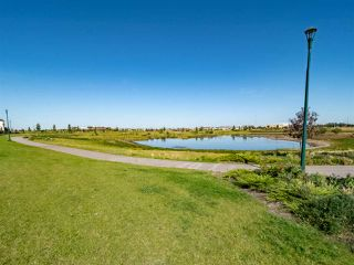 Photo 30: 2227 21 Avenue in Edmonton: Zone 30 House for sale : MLS®# E4171748