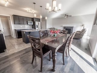 Photo 5: 2227 21 Avenue in Edmonton: Zone 30 House for sale : MLS®# E4171748