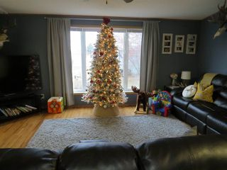 Photo 12: 11062 TWP 432: Rural Flagstaff County House for sale : MLS®# E4181187