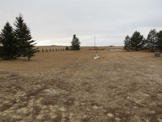 Photo 8: 11062 TWP 432: Rural Flagstaff County House for sale : MLS®# E4181187