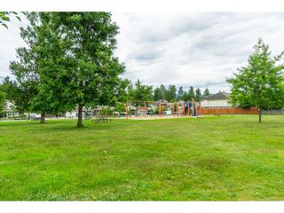 """Photo 36: 32954 PHELPS Avenue in Mission: Mission BC House for sale in """"Cedar Valley Estates"""" : MLS®# R2468941"""