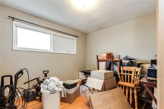 Photo 13: 4823 1 Street NE in Calgary: Greenview Detached for sale : MLS®# C4306006