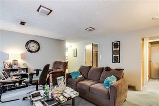 Photo 17: 4823 1 Street NE in Calgary: Greenview Detached for sale : MLS®# C4306006