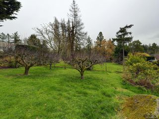 Photo 22: 691 Clayton Rd in North Saanich: NS Deep Cove Single Family Detached for sale : MLS®# 836927