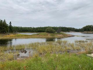 Photo 4: 10 Wraith Close in Kenora: Vacant Land for sale : MLS®# TB202303