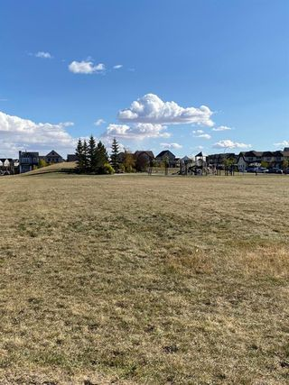Photo 29: 255 COPPERPOND Common SE in Calgary: Copperfield Row/Townhouse for sale : MLS®# A1036160