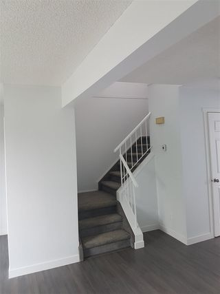 Photo 3: 3710 39 Avenue in Edmonton: Zone 29 House for sale : MLS®# E4172518