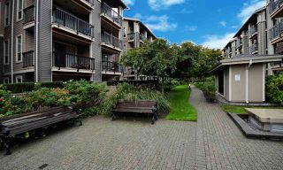 Photo 10: 125 21009 56 AVENUE in Langley: Salmon River Condo for sale : MLS®# R2409420