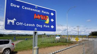 Photo 4: 58 WINGATE Way: Fort Saskatchewan House Half Duplex for sale : MLS®# E4183395