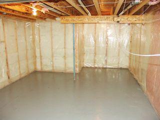 Photo 28: 4511 162A Avenue in Edmonton: Zone 03 House for sale : MLS®# E4184253