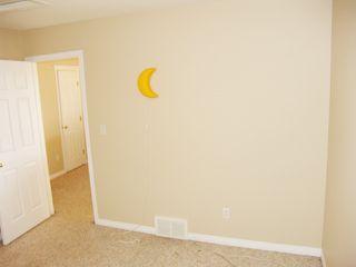Photo 23: 4511 162A Avenue in Edmonton: Zone 03 House for sale : MLS®# E4184253